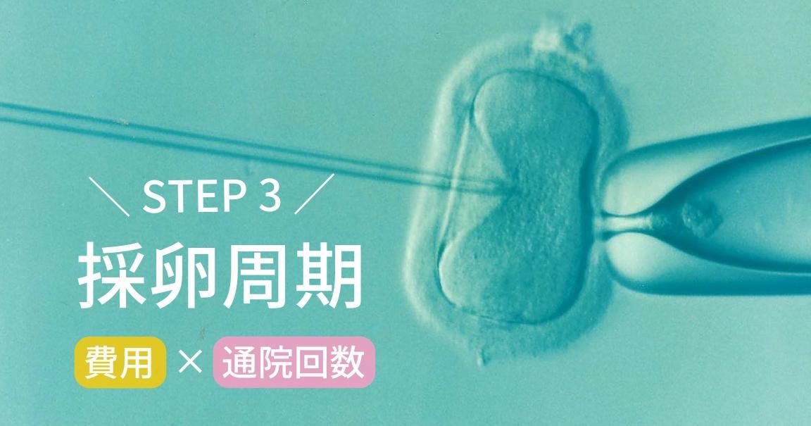 不妊治療の費用と通院回数(採卵周期)