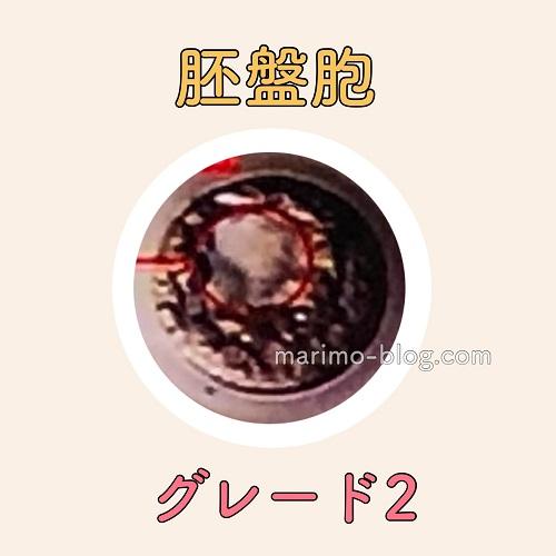 胚盤胞グレード2(G2)の妊娠率
