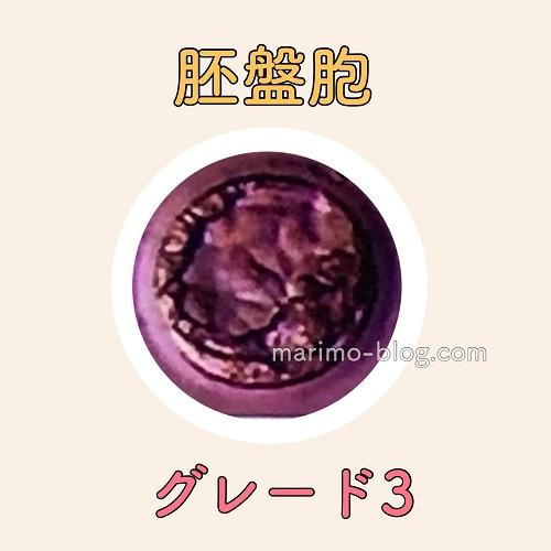 胚盤胞グレード3(G3)の妊娠率