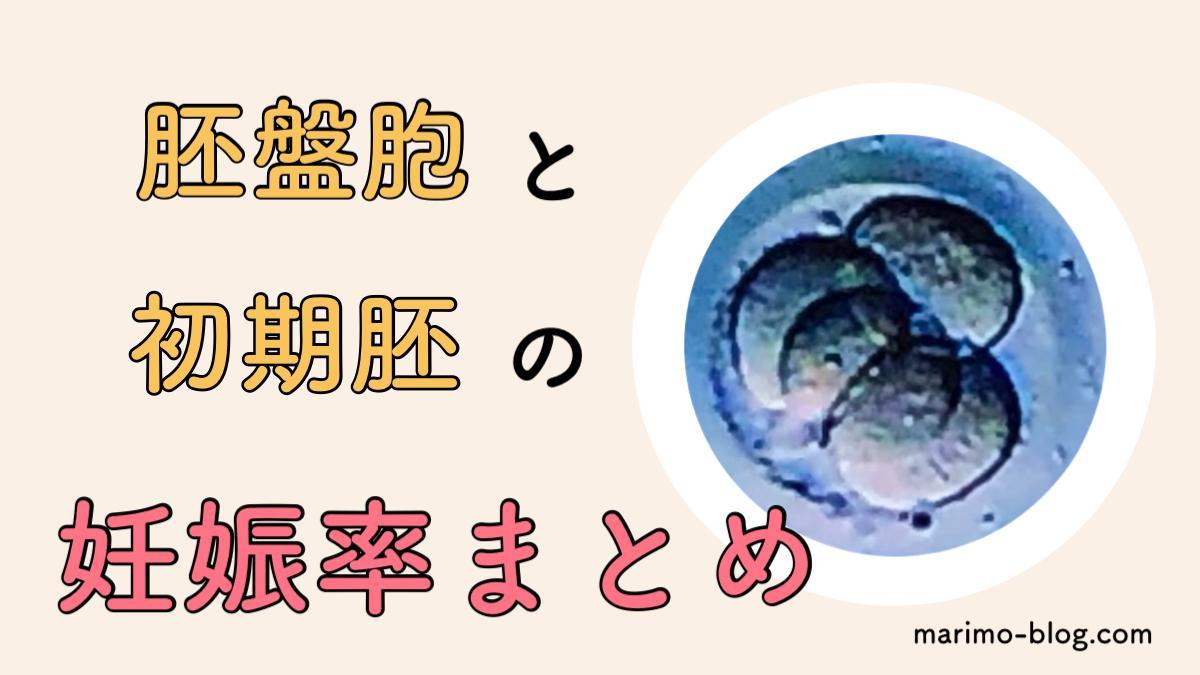 【妊娠率まとめ】初期胚と胚盤胞のグレード分類別