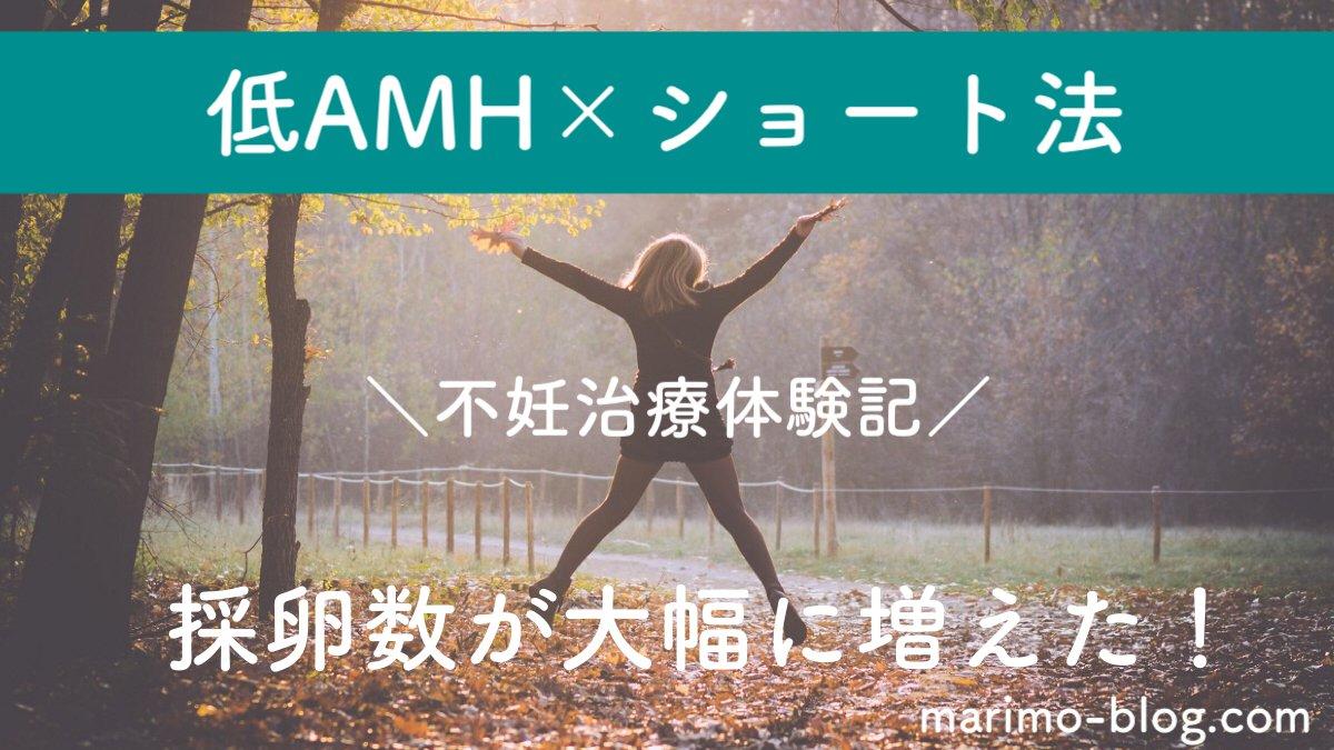 【不妊治療体験談】低AMH×ショート法で採卵数が大幅に増えた!