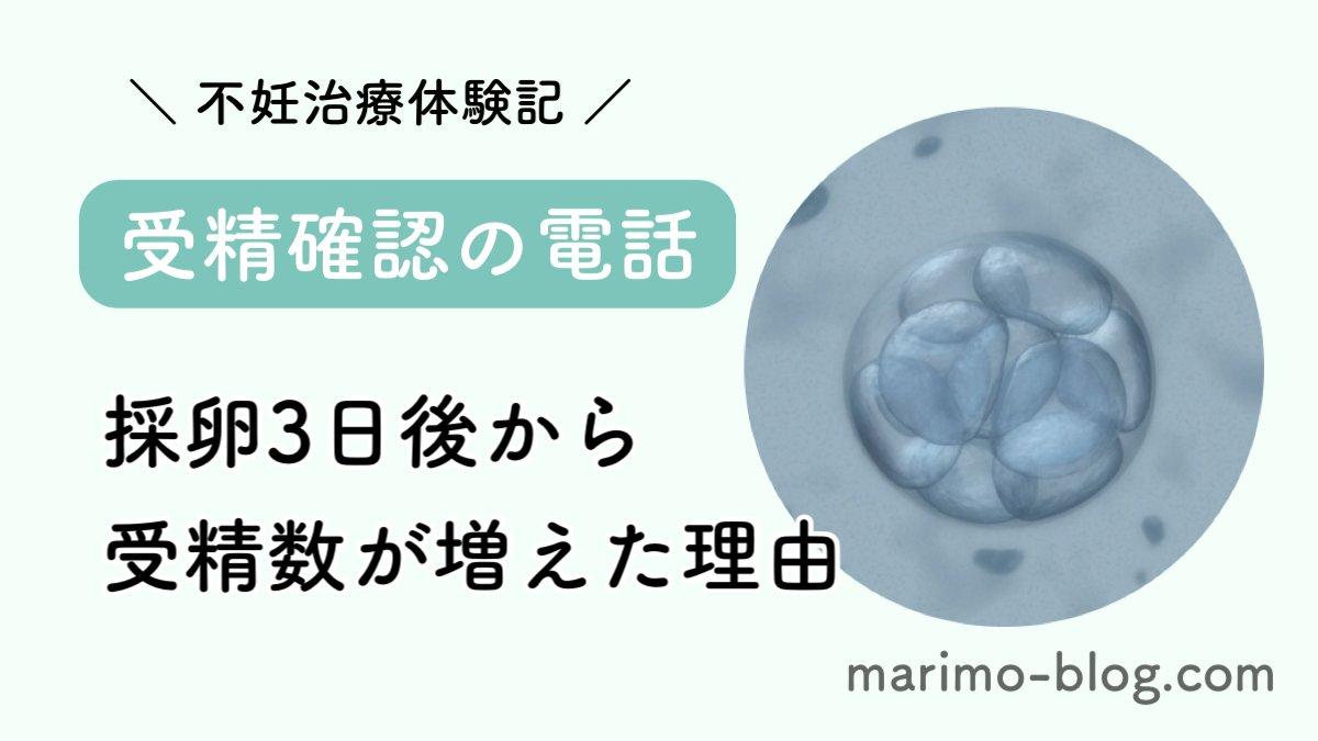 【体外受精】受精確認の電話と採卵3日後から受精数が増えた理由