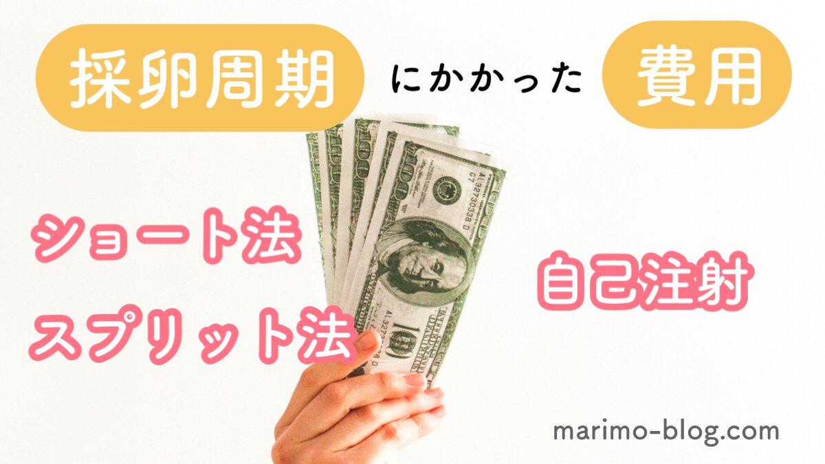 【採卵費用&通院回数】ショート法×自己注射×スプリット法